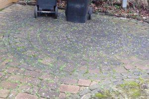 Vorplatz vor der Gartenhütte nach 4 Jahren Vermietung